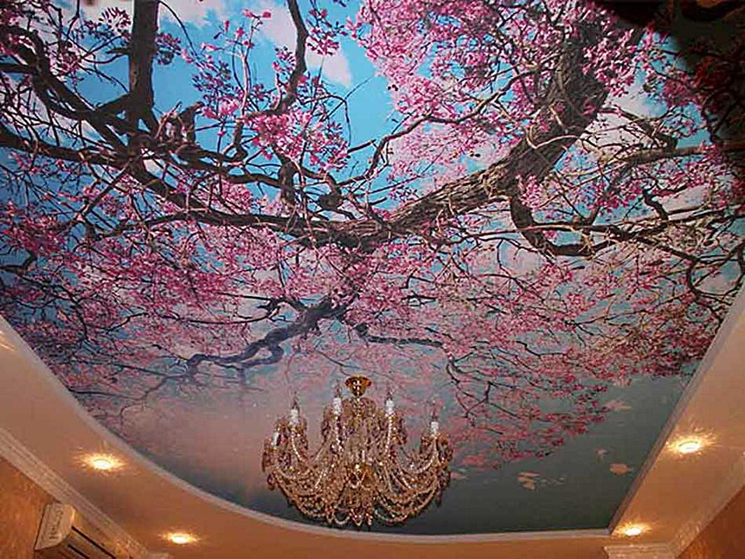 Натяжные потолки с рисунком - GreenhouseBay.ru