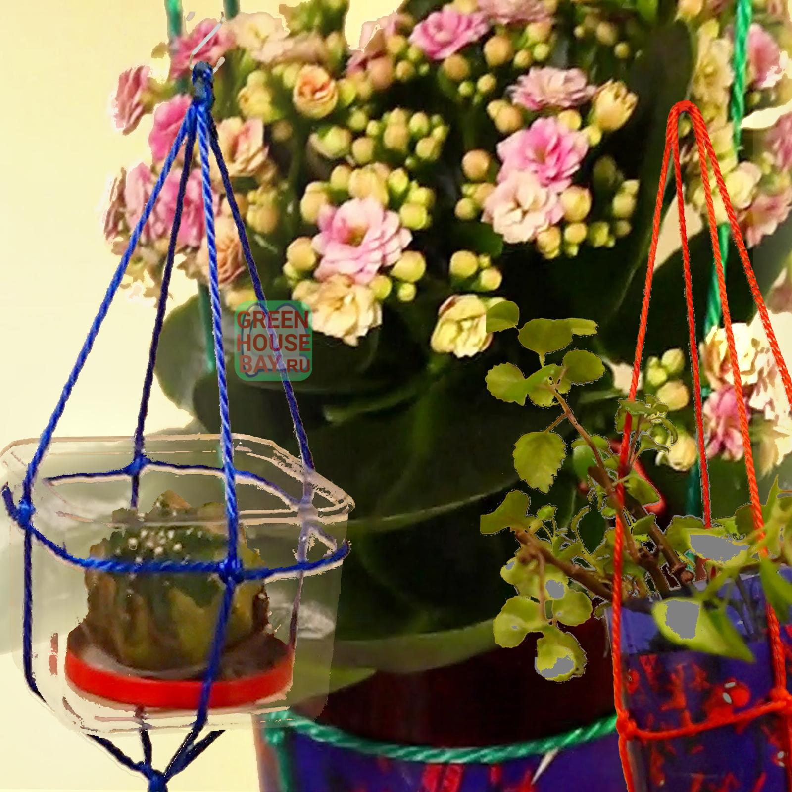 Подвесьте цветочный горшок нашим веревочным кашпо - GreenhouseBay.ru